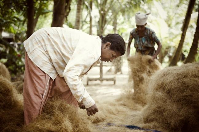 Making rope from coconut fibres. Munroe Island. Ashtamudi lake, Kollam, India. November 2013
